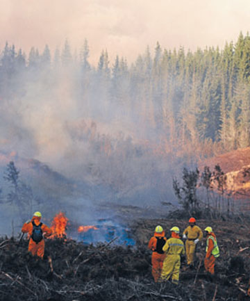 Fire crews battle the 2009 blaze in Dry Weather Rd in the Tadmor Valley, Glenhope. It was started by fireplace ashes.