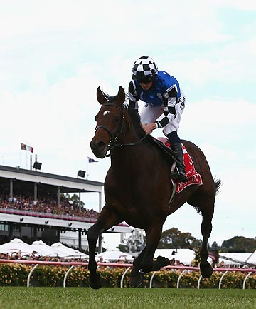 Who Came Last In The Melbourne Cup Today