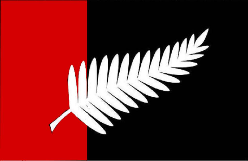 """Robert said of his design: """"The flag is composed of New Zealand national colours - black, white (or silver) and red ochre. The fern is used as New Zealand's most recognisable national symbol. The proportions are based on the golden mean to give visual harmony and balance."""""""