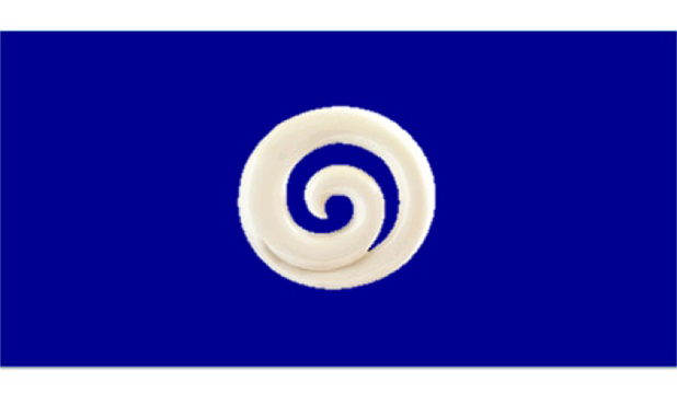 The 'White Koru on Blue Background' by John Hyndman of Canterbury like so many excellent designs was overlooked by the selection committee.