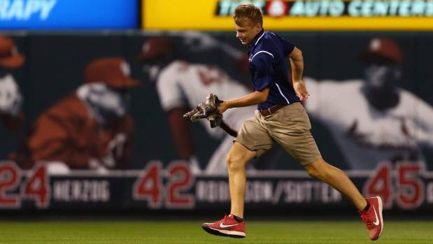 Cardinals claw out a win thanks to rally cat